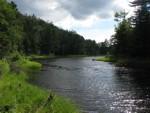 Ловля рыбы руками. Часть 6: ловись рыбка на течении, ловись и равнодушная